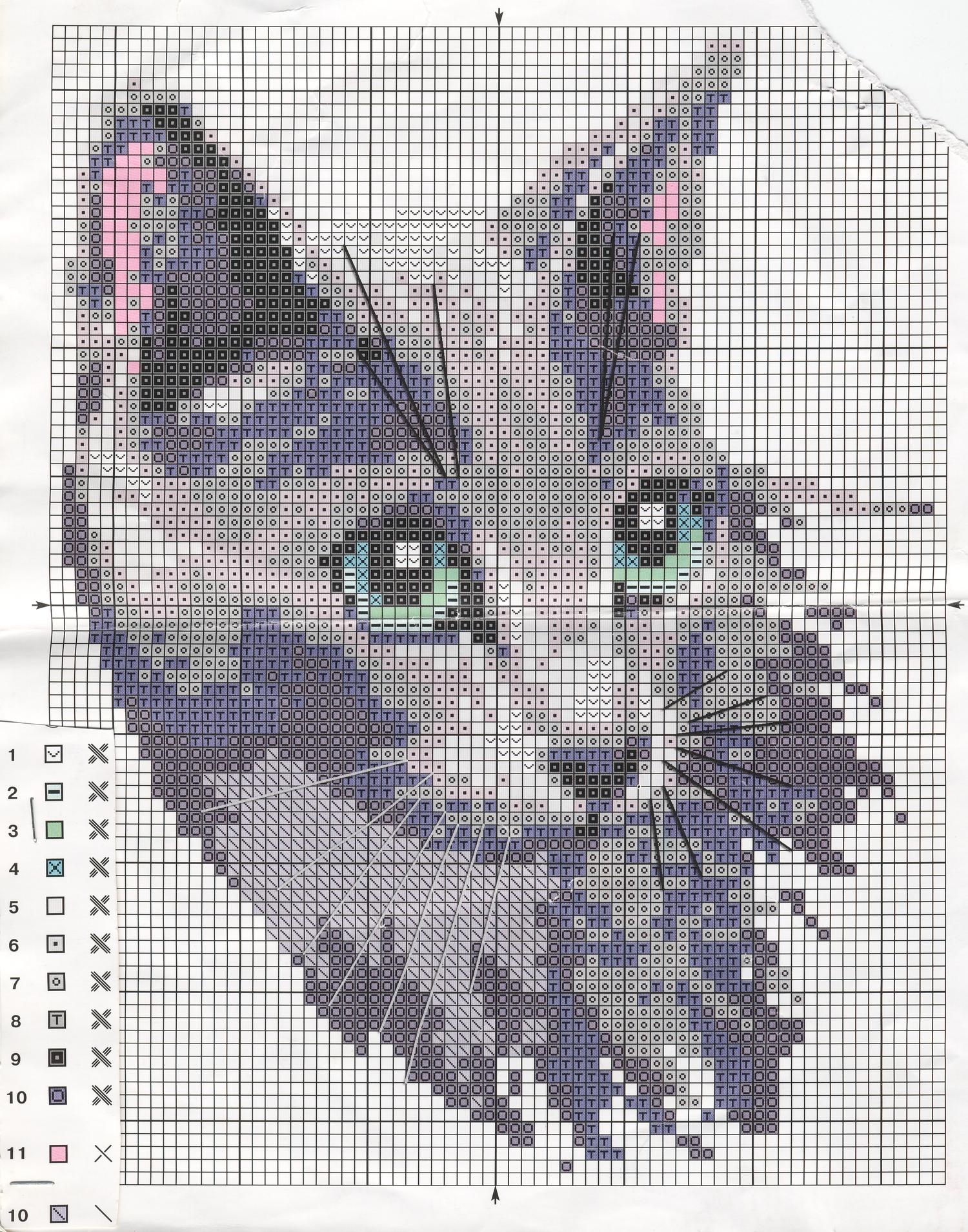 Синие коты вышивка крестом 16